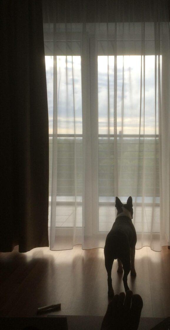 Jimi näyttelyaamuna hotellilla odottamassa päivän tapahtumia.